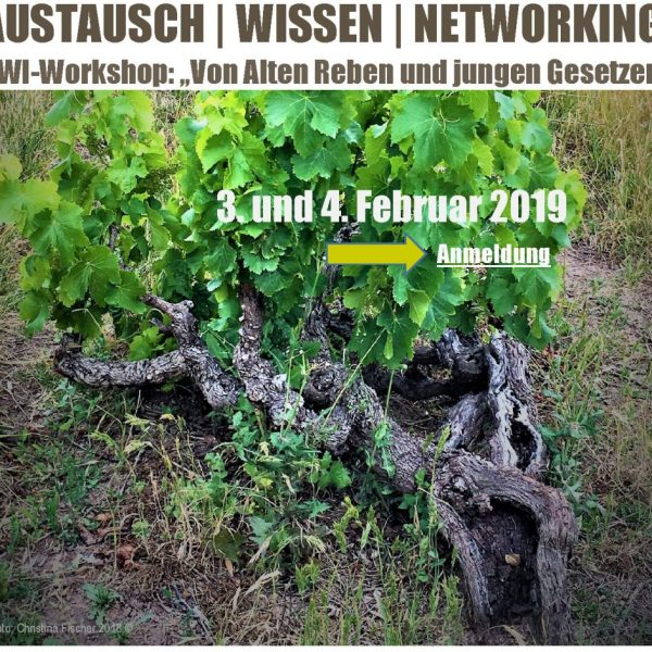 CdW_2019-DWI Workshop Stand_2019-01-11_final