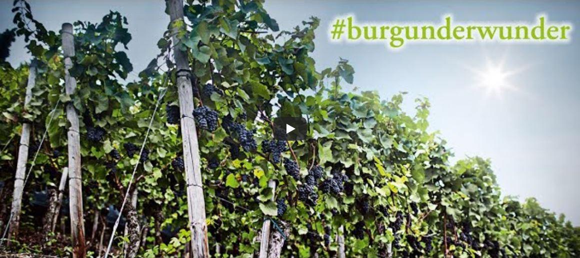 Burgunderwunder