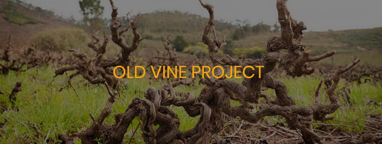 Old Vine Project