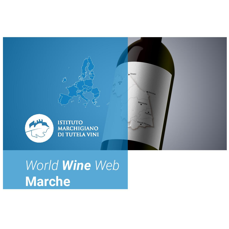 Faye Cardwell Wine Events